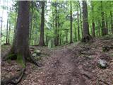 Nomenj - koca_na_soriski_planini