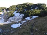 Ogradiedini del s snegom
