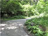 Za ovinkom bomo našli vstop na naslednjo pot, s katero bomo presekali cesto