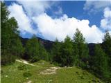 Debela peč, Brda, Lipanski vrh, Mrežceneoznačeno razpotje tik nad Blejsko kočo, levo pot na Viševnik in Mrežce