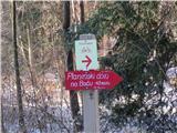 Boč - Donačka gorani več daleč do doma  pod Bočem