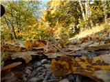Prelaz Ljubelj (koča)Jesen