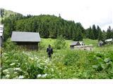 Črna prstČez planino Za Črno goro sva sestopila in tako naredila lepo krožno pot