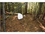 Zavetišče pod ŠpičkomNa približno 1350 m sem na tleh našel kapo.....če jo kdo pogreša