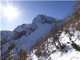 Matkova kopaSonce že visoko na nebu. Krnička gora.