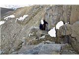 Grosses Wiesbachhorn 3564 mPoplezavanje proti vrhu