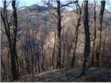 Greben = Škrabarjev vrh - Reška planina - Gradišče Razgledi
