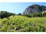 Planina Za Skalo in KaluderOpuščena planina za Črnim vrhom