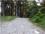 Podrožca / Rosenbach - planina_kladje___quadiaalm