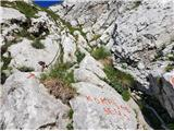 Kalška gorakratek varovan del