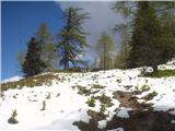 Goli vrh  1787 mnmna planini pa takole