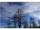 Čudovita narava- Narava je čudovita