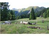 Planina Za Skalo in Kaluderob desni strani tega travnika proti robu gozda