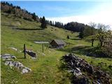 Ilovec - Planina Ilovec