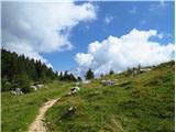 Debela peč, Brda, Lipanski vrh, Mrežcepot se za kratek čas izravna