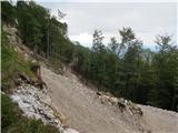 Storžič nove gozdne ceste pod Kališčem