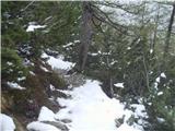 Goli vrh  1787 mnmnazaj po markirani do planine na malco :)