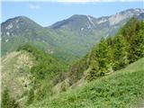 Kamniški vrhPogled s Kamniškega vrha 1259 proti Kržišču 1658, Krvavcu 1853 in Velikemu Zvohu 1971. Spredaj levo Planjava 1243.