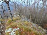 Kamnik ( 861m )na severni strani je vse pomrznjeno