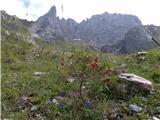 Monte Peralba (2694)še se vrnemo na prečenje Chiadenisa