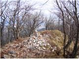 Brložen 851m nmvKrvavica  - vrh