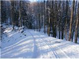 Boč...sestop po vzhodni poti skozi Staro Drevesnico...