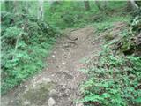 Bidrovec - Planinski dom Gorščica