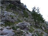 Skriti kotički v gorskem rajuv brezpotje na Trentski Pelc, da že do tule prideš je težko po eni strani, ker je v dolini več razpotij