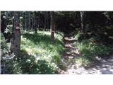 ladine___ladinach - Mačenski vrh / Matschacher Gupf