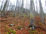 Kamnik ( 861m )odcep za lovsko pot