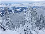 Uršlja Gora (Plešivec) 1699mČrni vrh
