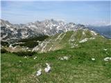 Vogel-Šija-Rodicapogled nazaj na verigo vrhov od najnižjega prevala Globoko do najvišjega Vrha nad Škrbino in zelenega Bohinjskega Migovca