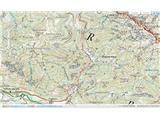 Cesta Belca-Zapornica (Belca)markirana pot, gozdna pot