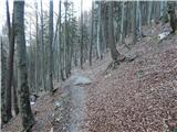 Ljubelj - potocnikova_planina