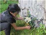 Gorska obeležja NOBPoložitev cvetja