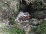 Izvir reke Meže