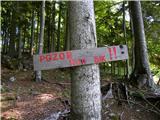 Gozdarska koča Rovtarica - planina_tamar