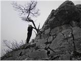 Ojstri vrh 1371mNa grebenu