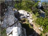 StegovnikPri sestopu iz grebena za varnost skrbita dve jeklenici.