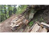 Planinske koče- Drva  ob poti iz sedla Suha proti koči pod Golico.../ Slika je od Hasana/