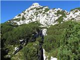 Skriti kotički v gorskem rajuše ni vrh