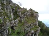Javorca(Golte)sfinga