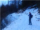 Javorca(Golte)takaj nama je pot prekrižal gams, ki pa je bil prehiter, da bi ga posnel