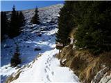 Krasji vrhpred Snežno jamo