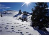 Dravh-Lajnar-Slatnik-Možic-Litostrojska koča - Sončni utrinek