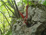 Vodiška planinakar naenkrat iz skale