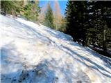Goli vrh  1787 mnmše precej snega na poti