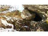 Javorca(Golte)utrinek v grapi na Lopno peč