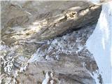 Javorca(Golte)grapa na Lopno peč
