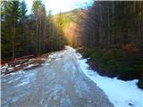 Križevnik-Molička peč-Veliki vrh-Dleskovecod tukaj naprej samo z verigami, kolesnice so čisto ledene